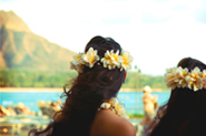 Hawaii Travel Consultants
